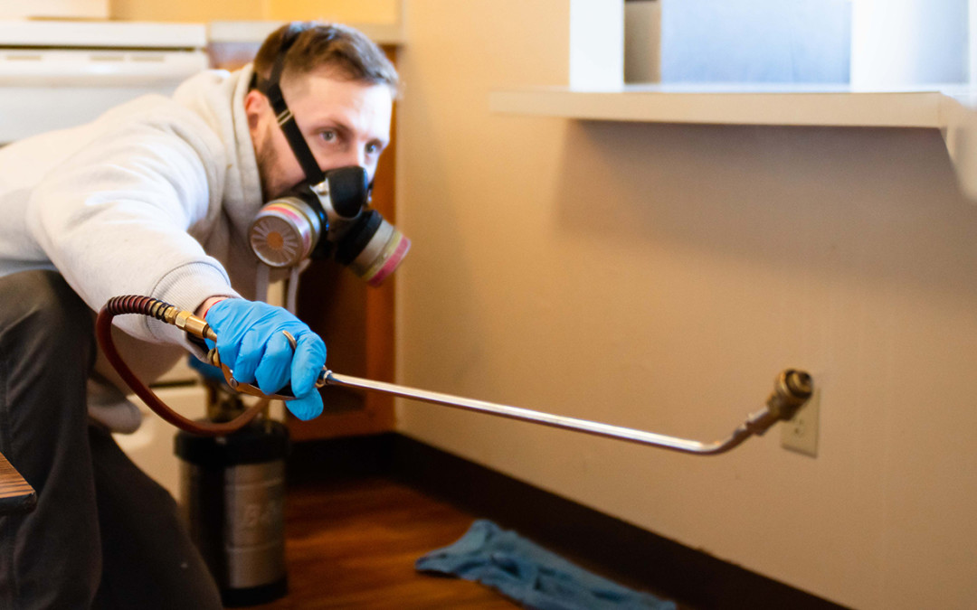The Most Commonly Controlled Nuisance Pests, Structural Pests, And Medically Significant Pests Within Homes And Buildings In Massachusetts