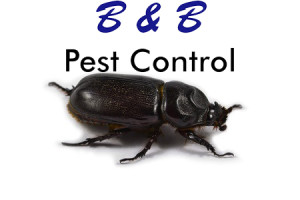 Boston Pest Control
