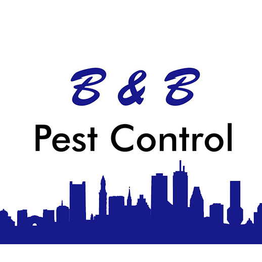 How Safe Is Pest Control For Family/Pets | B&B Pest Control