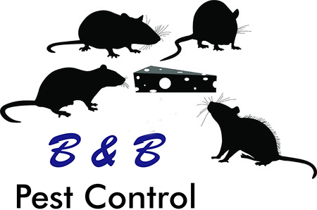 Its Always Rodent Season | B&B Pest Control