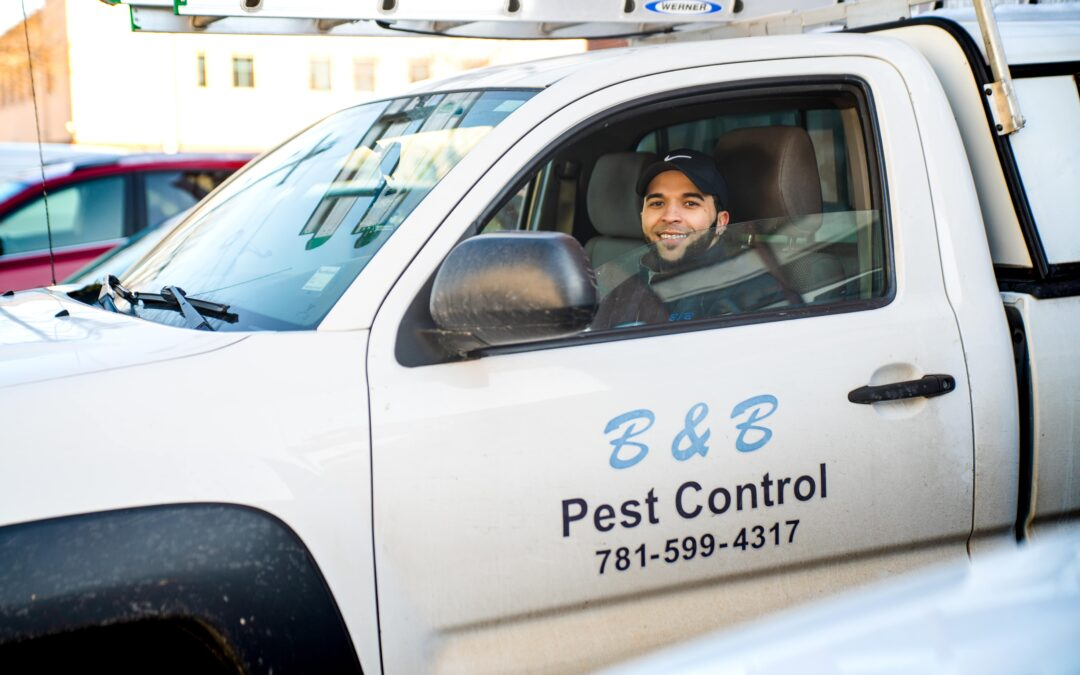 Most Pest Control Professionals Nationwide State That The Rate Of Ant Infestations Within Residential Homes Is Increasing With Each Passing Year, Especially In The Northeast