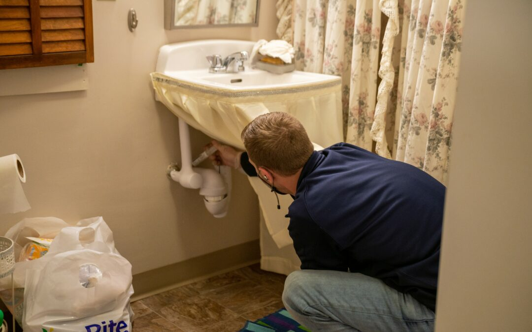 Why Silverfish Are Attracted To Your Bathroom