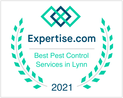 Best Pest Control Services in Lynn
